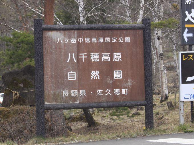 「八千穂高原自然園」へ車やバイク以外で行きたい方は・・・