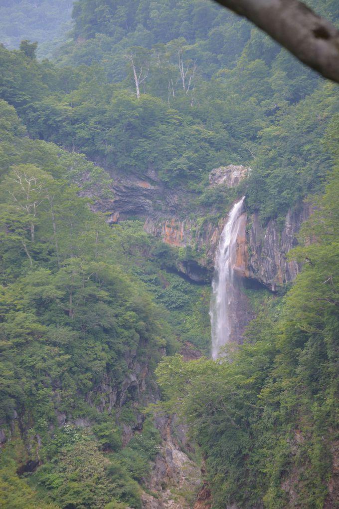 「日本の滝100選」の「惣滝」も見ていこう