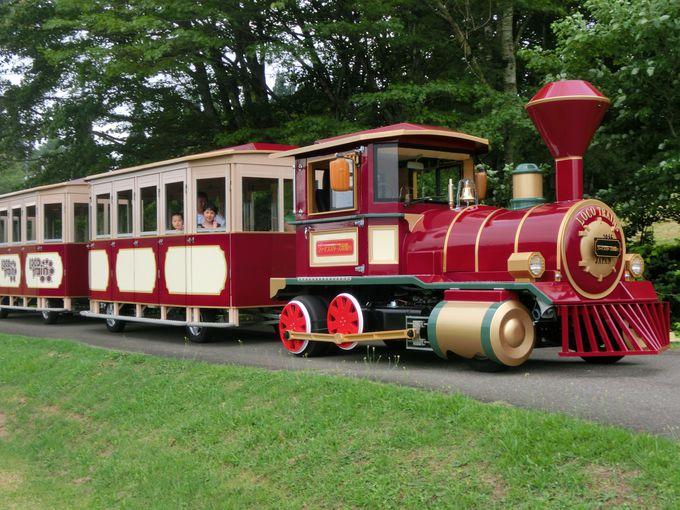 その名も「ファイブスターズ黒姫」ロコトレインは機関車バス