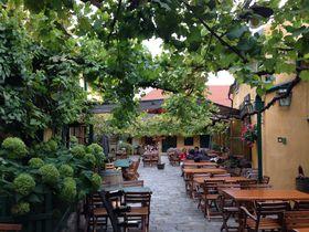 伝統スタイルの「ホイリゲ」とは?東オーストリアのワイン酒場を楽しむ