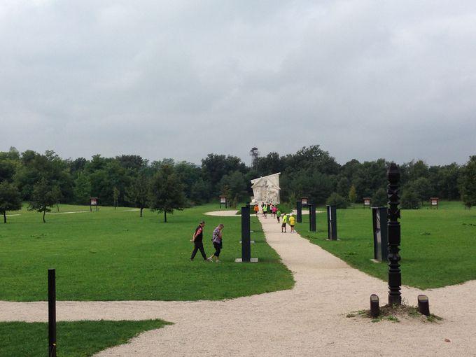 本当のピクニックができるような、立派な公園になりました。