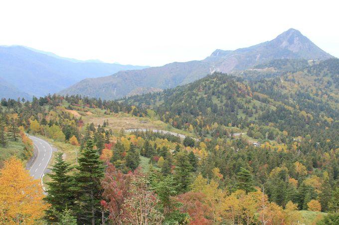 長野県横手山麓「のぞき」から志賀高原と信州の山々の大パノラマ