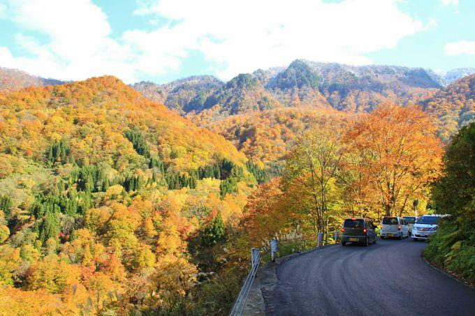 四季折々の表情を見せる山々を見ながらのドライブ
