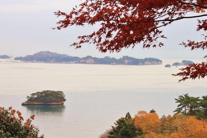 松島四大観の一つ扇谷からの眺め