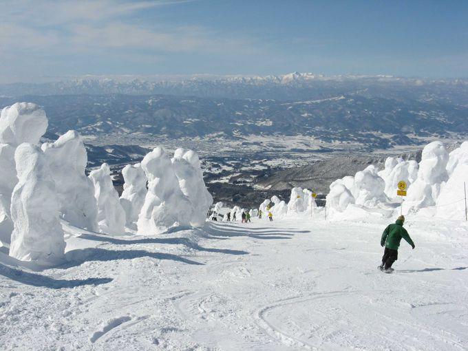 樹氷原の中で爽快な滑りが楽しめます。