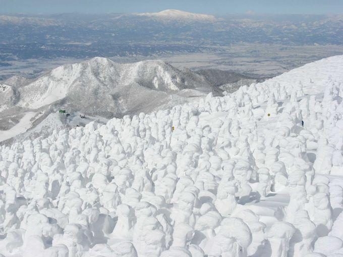 地蔵山から見る樹氷原と山々の眺望