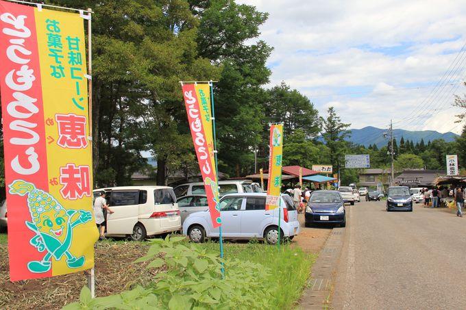信濃町の夏の名所!直売所が並ぶ「もろこし街道」