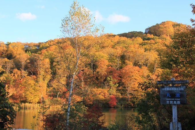 水面に映える色彩も美しい 志賀高原の池・沼めぐり