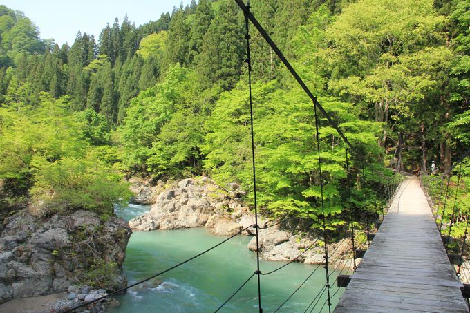 新緑や紅葉の渓谷が美しい吊り橋・見倉橋も必見