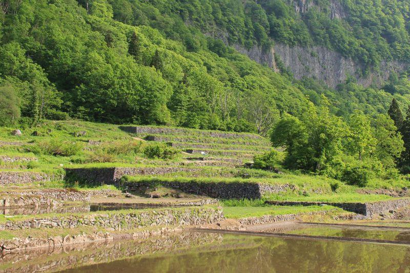 ここは古代遺跡?新潟県秋山郷・結東の石垣田は隠れた絶景スポット