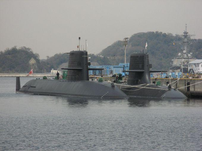 横須賀観光ならここ!軍港クルーズに無人島「猿島」探検、そしてゴジラも?!