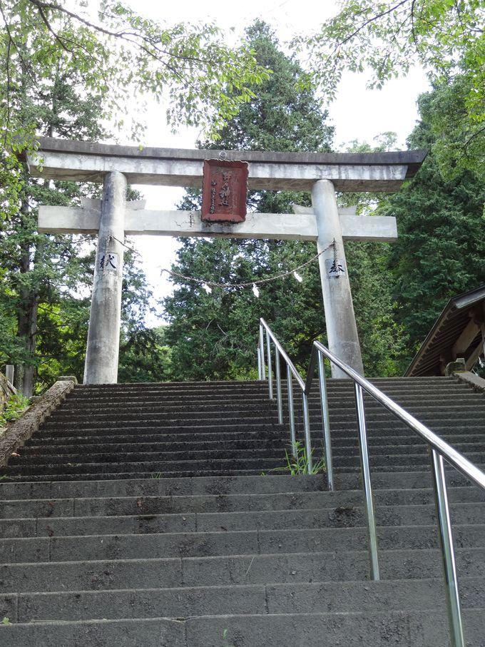 「いも代官」の愛称で知られる19代代官井戸平左衛門を祀る神社へ