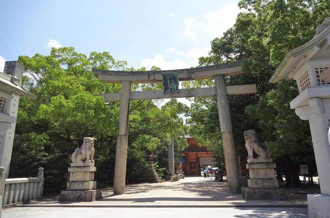 国宝の島と呼ばれた大三島!大山祇神社で国宝を見よう!