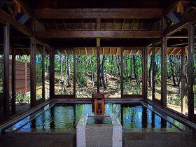宮崎の温泉は、フェニックス・シーガイア・リゾート「松泉宮」で優雅に!|宮崎県|トラベルjp<たびねす>
