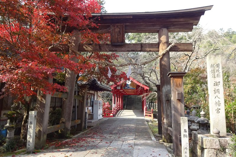 秀吉も立ち寄った広島県三原・御調八幡宮〜紅葉と桜の古刹へ