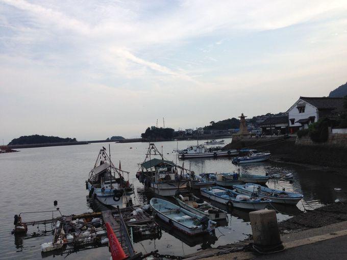『潔く柔く』の映画ロケ地〜カンナと鞆港の風景〜