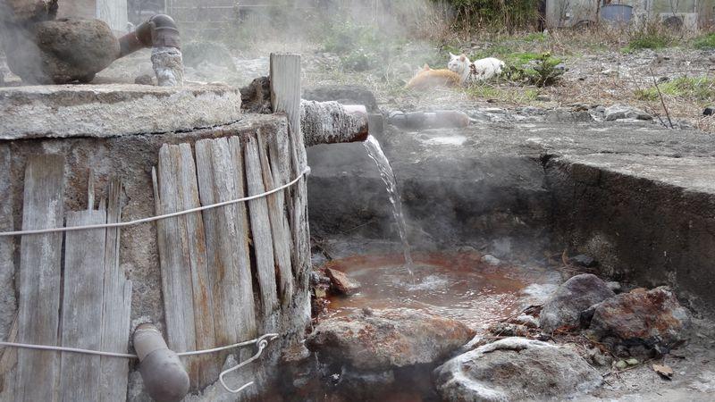 別府八湯の1つ鉄輪温泉〜町歩きしながらその魅力発見!