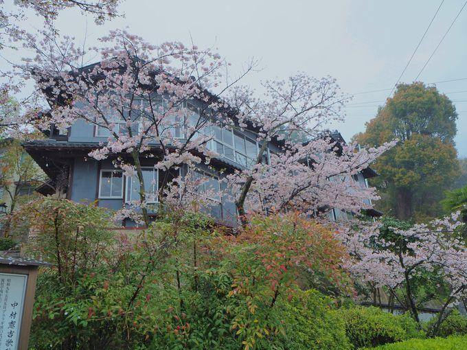 千光寺山斜面に建てられた、尾道商人の優雅な茶園建築「みはらし亭」