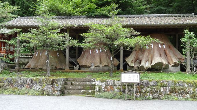 由布岳の女神〜「宇奈岐日女神社」で雄大な自然のパワーを