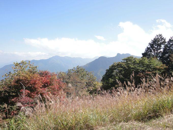 「三峰公園展望の丘」から妙法ヶ岳山頂・秩父盆地を眺める