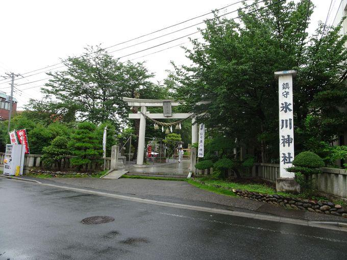 埼玉県川口市「鎮守氷川神社」のご利益は?