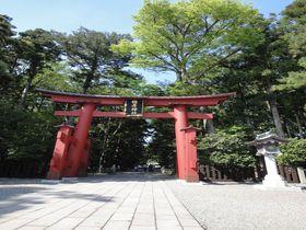 中越最強の2大パワースポット!「彌彦神社」「國上寺」で開運詣り|新潟県|トラベルjp<たびねす>