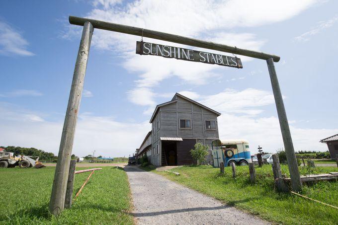 九十九里浜に隣接!乗馬クラブ「サンシャインステーブルス」