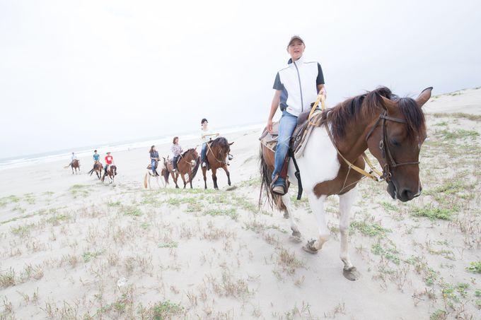 全国有数の砂丘海岸!九十九里浜の砂丘を体感