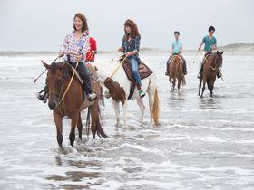 波打ち際に馬と走る!九十九里浜で乗馬体験「サンシャインステーブルズ」