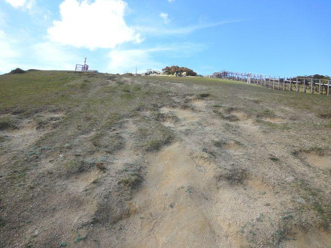 ロープウエイ「山上公園駅」まで行ったら、山頂目指そう!