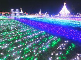 東武動物公園のイルミネーションは音と光のリズミネーション!|埼玉県|トラベルjp<たびねす>