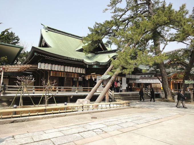新潟観光で願掛けも!神社巡りでパワーチャージ