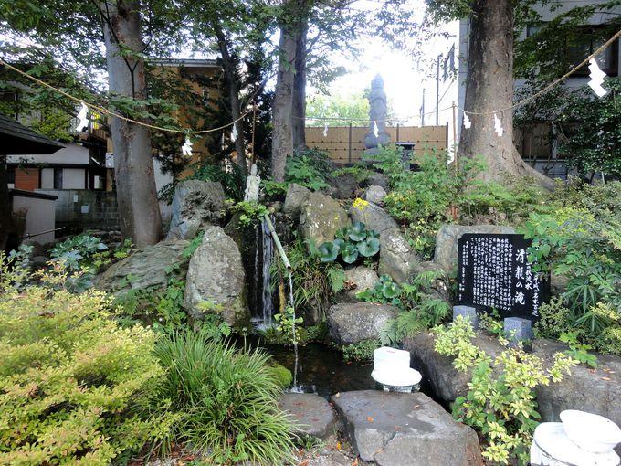「清龍の滝」で武甲山の伏流水のご神徳を…!