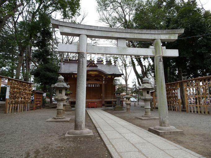 北条政子も安産祈願した!「宮乃�刀iみやのめ)神社」