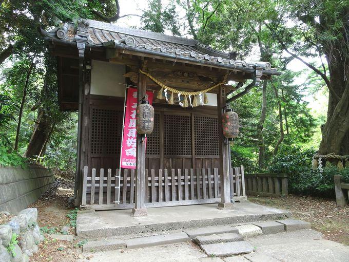 古墳の中腹にあるのが「浅間神社」…木花開耶姫命が祀られている