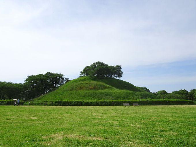 満喫ポイント1:日本最大の円墳「丸墓山古墳」に登る!