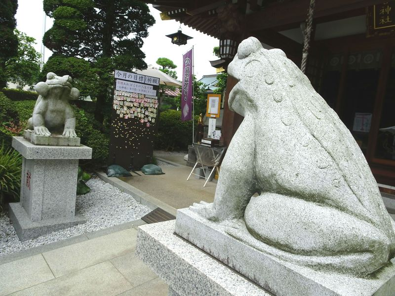こ、狛蛙!?カエルが神使いのレアな神社!埼玉「水宮神社」