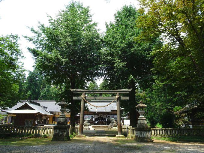 奈良の大神神社と関係あるの?栃木「大神神社」のご利益は