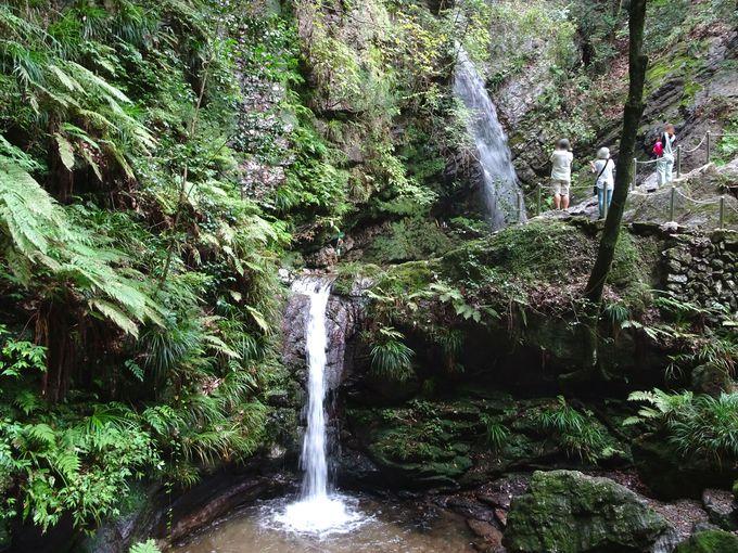 ポイント4:男滝・女滝を写真におさめる