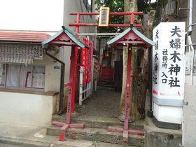 あの芸能人も参拝!子授けご利益が篤い…新宿「夫婦木神社」|東京都|トラベルjp<たびねす>