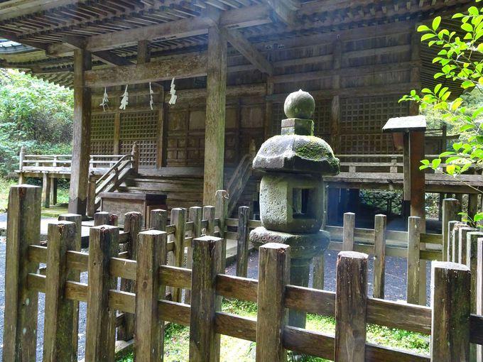 社殿前にある、歴史のある灯籠も必見