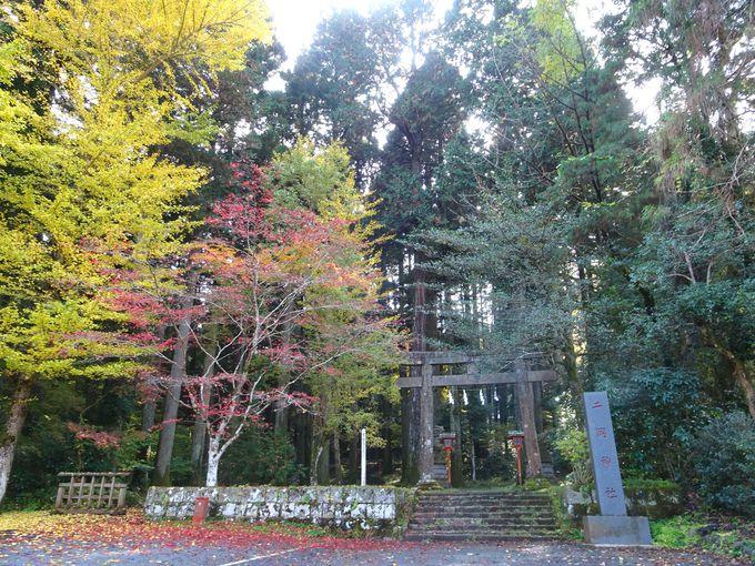 二岡神社の鳥居付近で、広岡浅子・村岡花子らが写真撮影!