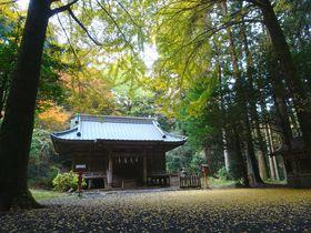 映画・ドラマなどロケ多数!静岡「二岡神社」は御殿場の隠れ名所|静岡県|トラベルjp<たびねす>