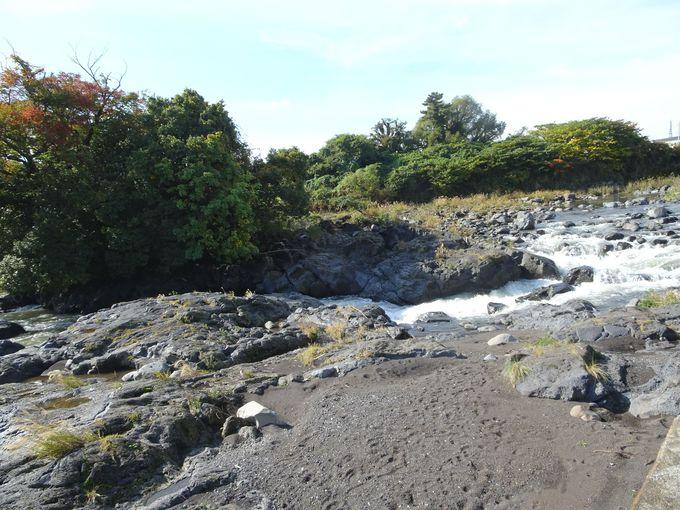 ポイント4:鮎壺広場から溶岩流を眺めよう