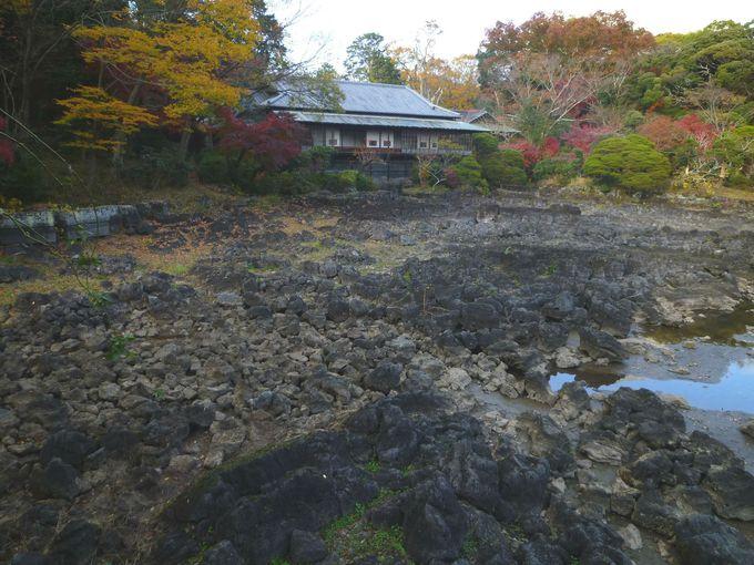 次は、三島市立公園「楽寿園」へGO!