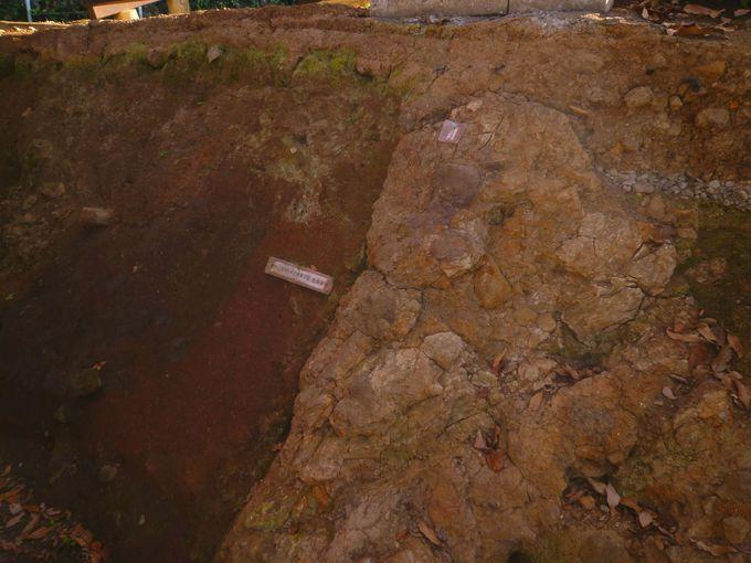 断層のズレを目の当たりに! 函南町「丹那断層公園」