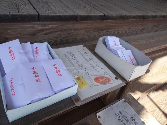 「東大門」で食事をしたら、小鹿野のパワースポット「小鹿神社」で開運祈願