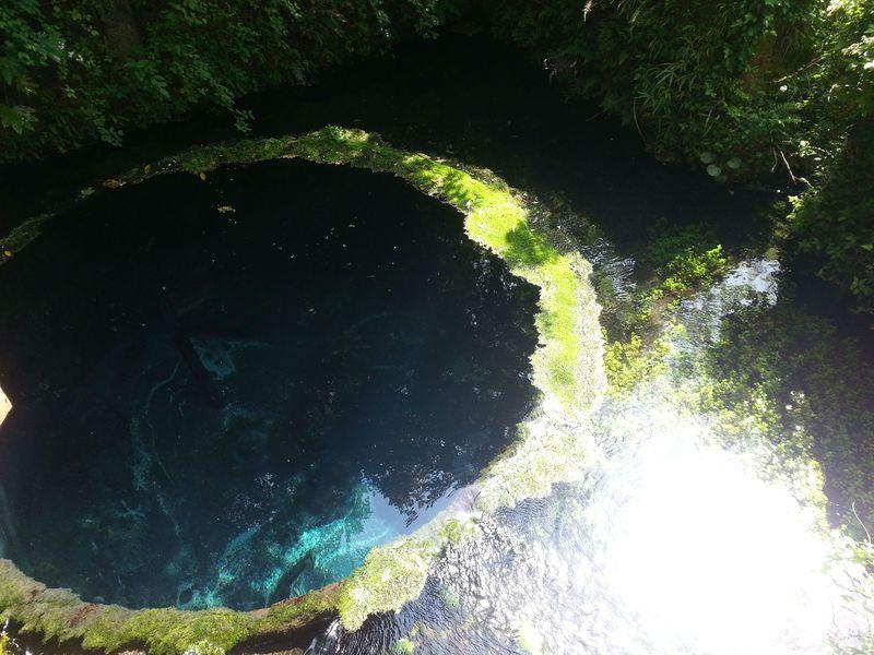 富士山の湧水と大地を感じる!北伊豆おすすめドライブスポット5選