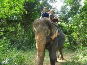 ゾウ使いはモン族!カンチャナブリーでゾウ乗り体験「ワンポー エレファント キャンプ」|タイ|トラベルjp<たびねす>
