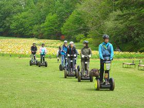お花畑にセグウェイ、面白遊具も!埼玉「国営武蔵丘陵森林公園」は家族で楽しめるスポット|埼玉県|トラベルjp<たびねす>
